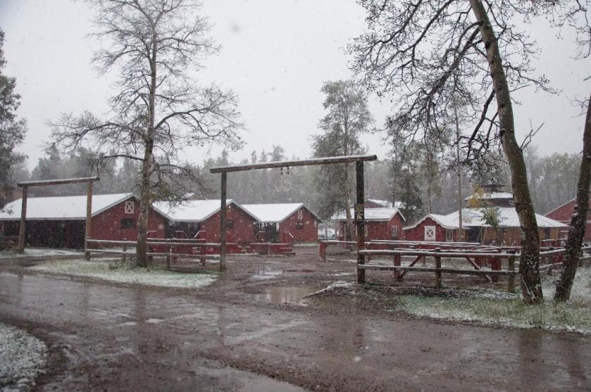 barnyard snow.jpg